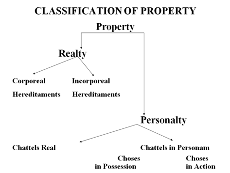 classification%20of%20property.png